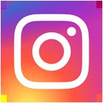 Haukikoira Instagramissa
